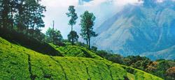 Sakleshpur - Coorg - Ooty - Kodanad Travel Package