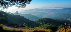 Sakleshpur - Coorg - Ooty - Munnar Holiday Package