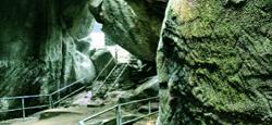 Sakleshpur - Wayanad Tour Package