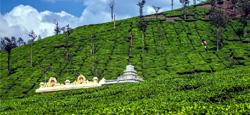 Sakleshpur - Kudremukh National Park - Sringeri Travel Package